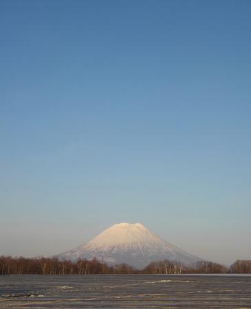 yotei-spring.jpg
